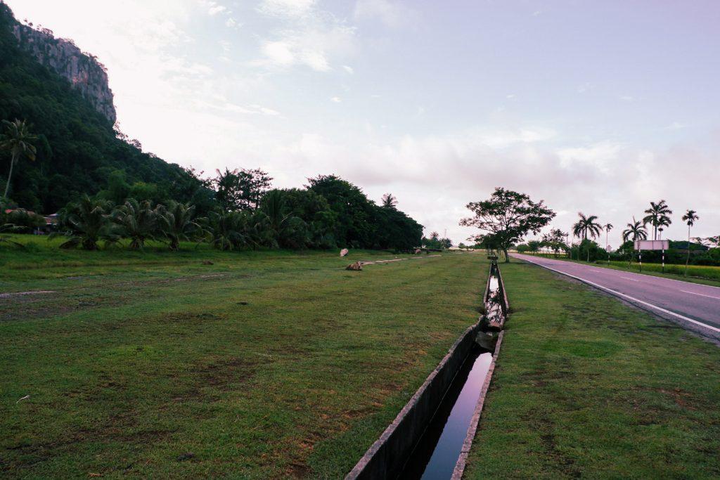 Kedah paddy fields in Alor Star